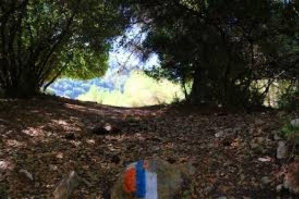 נוף כרמל – קיבוץ יגור